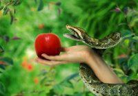 """""""Fruto prohibido"""" no era manzana, se tradujo mal"""