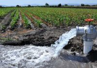 Autorizan pozos para ejército pese a veda en Delicias