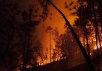 Alarma por incendio en la sierra de Chihuahua