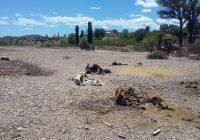 En Guerrero habrá cero tolerancia para quien tire basura y animales muertos a los cauces de arroyos