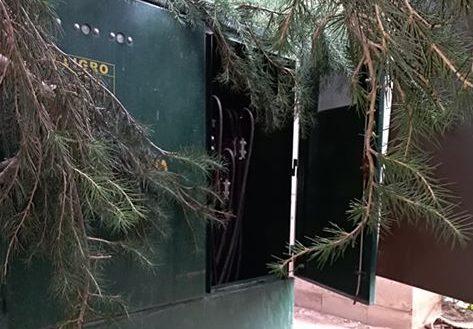 Denuncian descuido y abandono de transformadores en la plaza principal de Cuauhtémoc