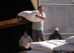 Entregaron 80 toneladas de avena