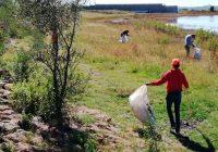 Integran programa de empleo temporal en Anahuac