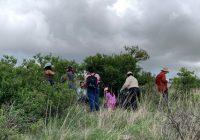 Buscan investigadores UACH  plantas medicinales que combaten al Covid-19