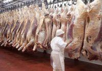 Registró máximo histórico producción nacional de carne bovina en 2020: Agricultura